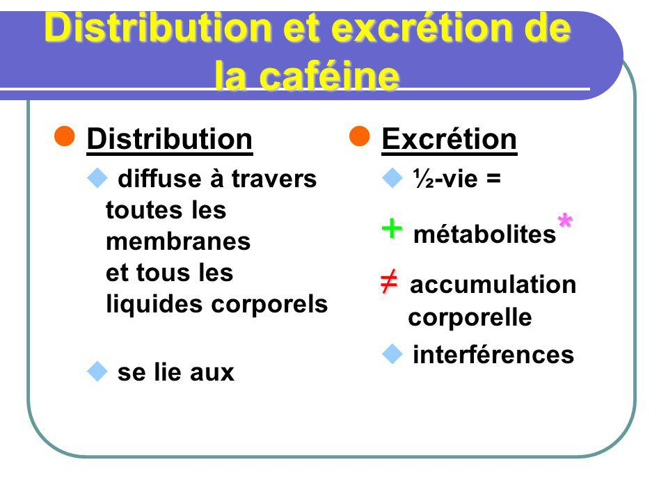 Distribution et excrétion de la caféine