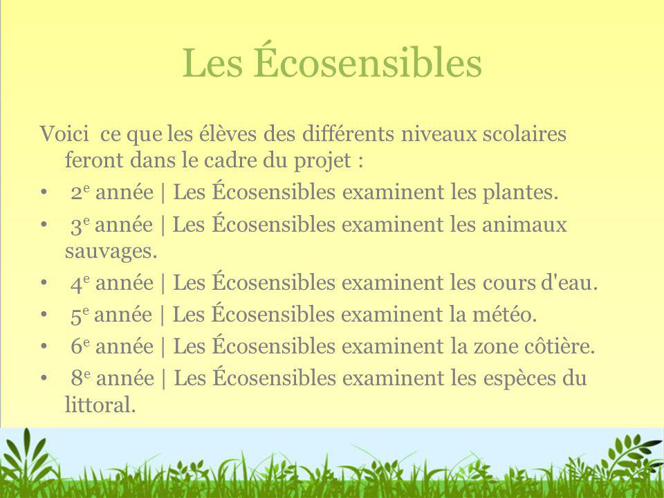Les Écosensibles Voici ce que les élèves des différents niveaux scolaires feront dans le cadre du projet :