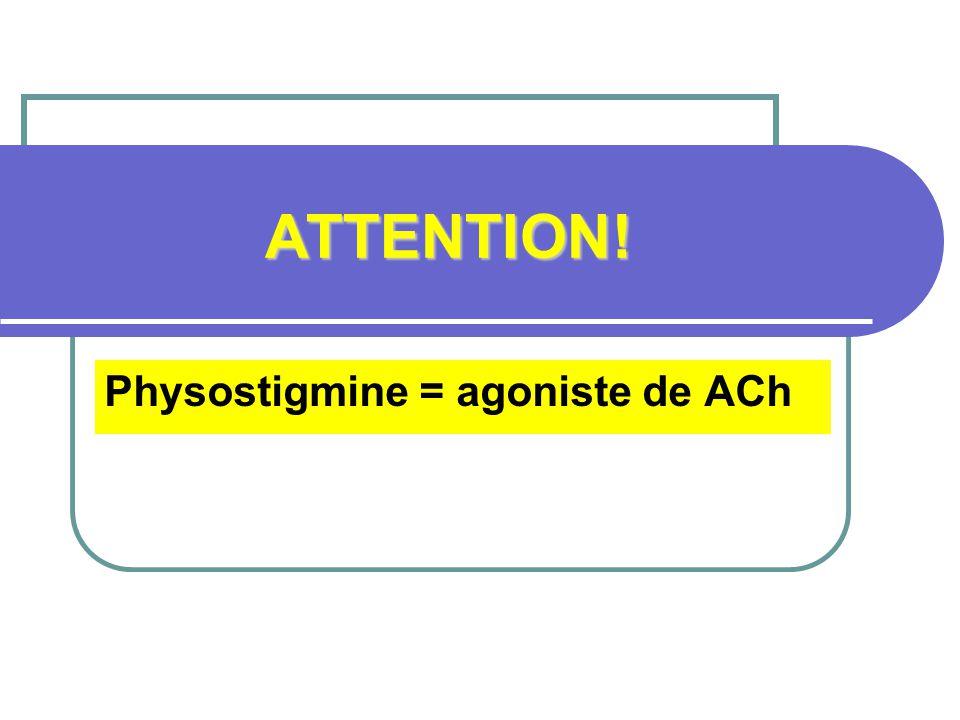 Physostigmine = agoniste de ACh