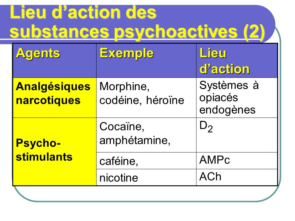 Lieu d'action des substances psychoactives (2)