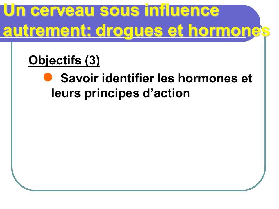 Un cerveau sous influence autrement: drogues et hormones