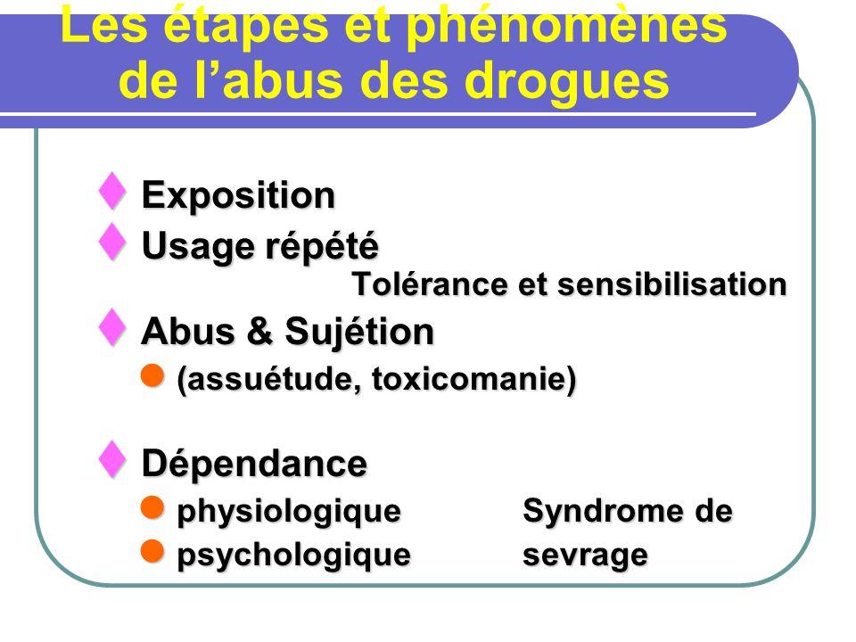 Les étapes et phénomènes de l'abus des drogues