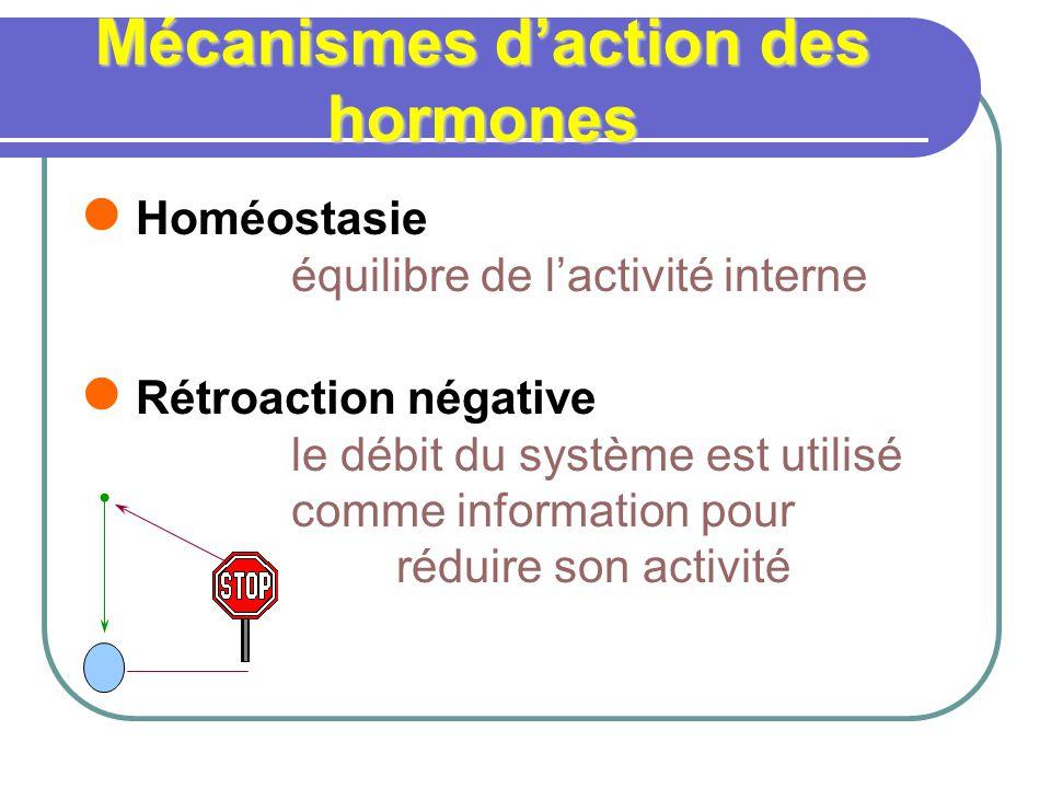 Mécanismes d'action des hormones