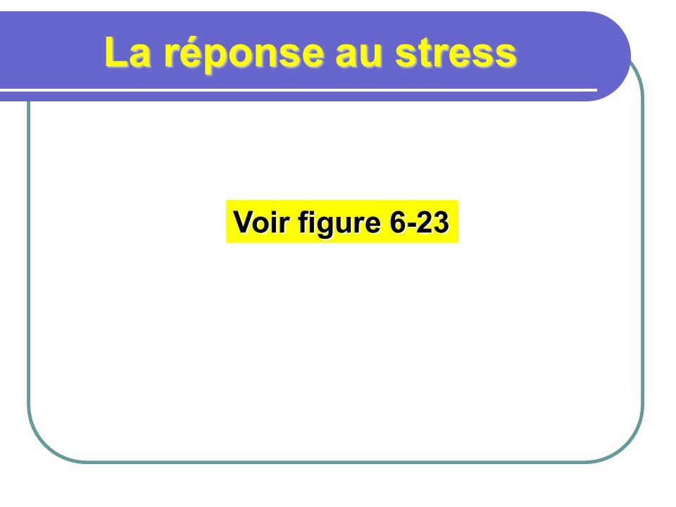 La réponse au stress Voir figure 6-23
