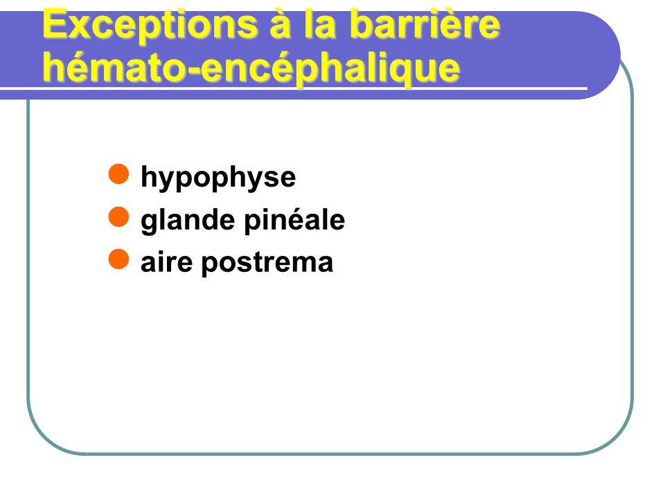 Exceptions à la barrière hémato-encéphalique