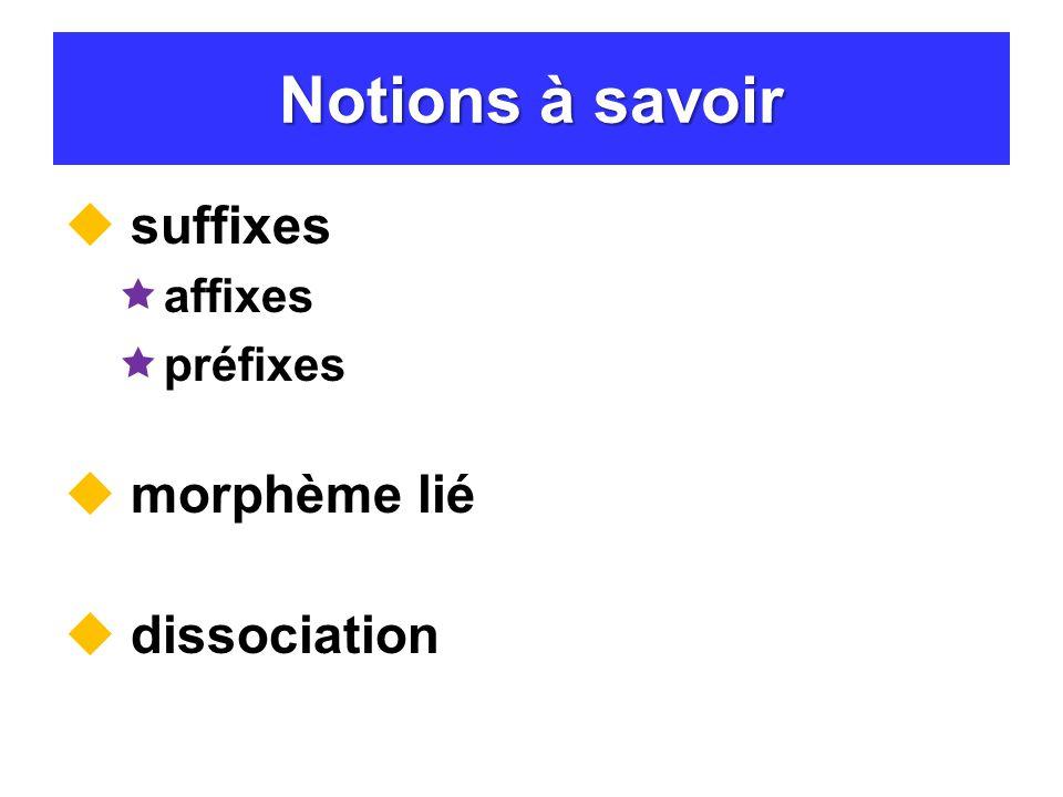 Notions à savoir suffixes affixes préfixes morphème lié dissociation