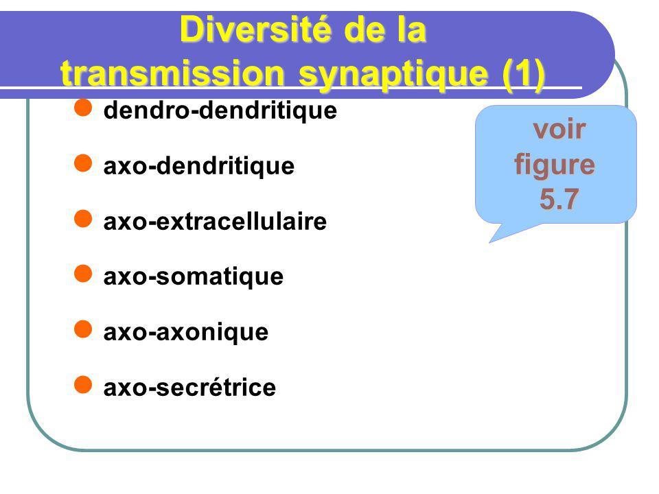 Diversité de la transmission synaptique (1)