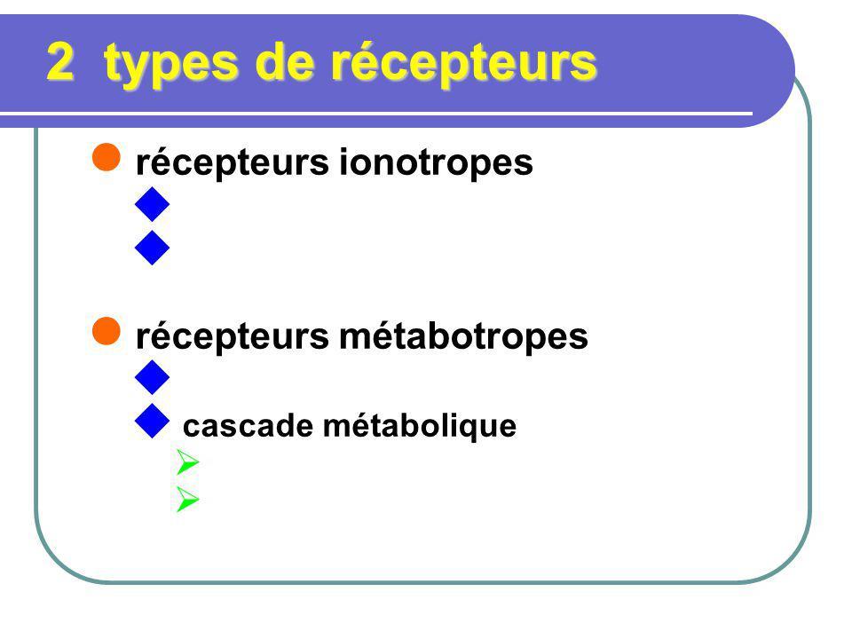 2 types de récepteurs récepteurs ionotropes récepteurs métabotropes