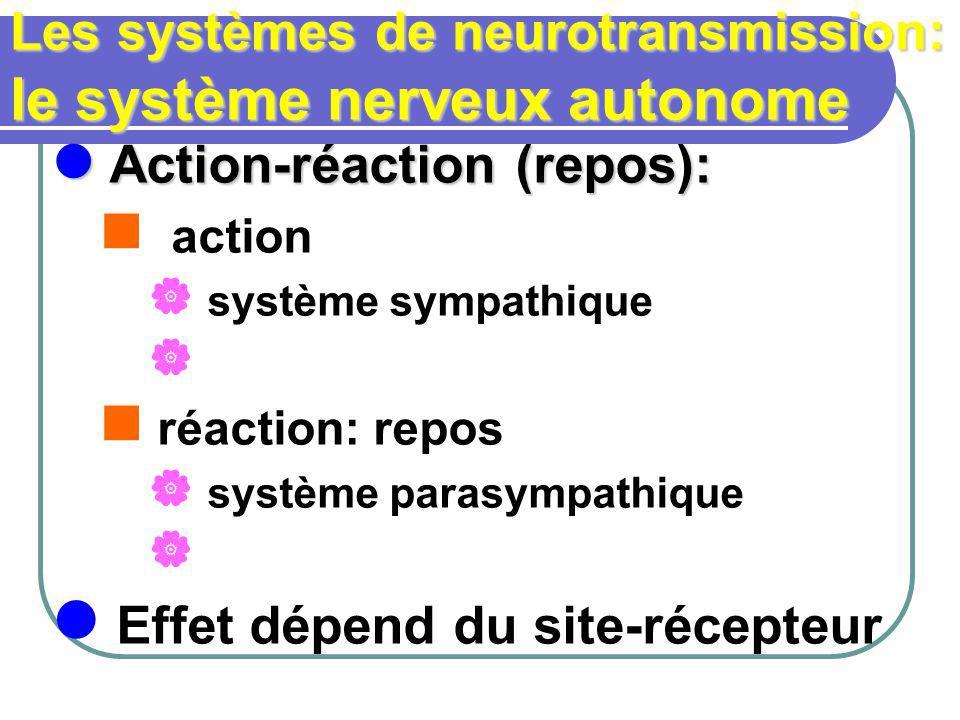 Les systèmes de neurotransmission: le système nerveux autonome