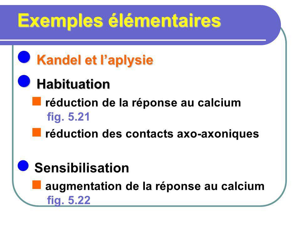 Exemples élémentaires