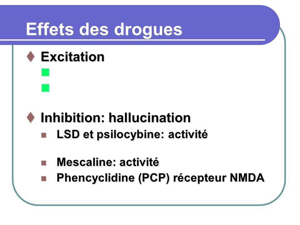 Effets des drogues Excitation Inhibition: hallucination