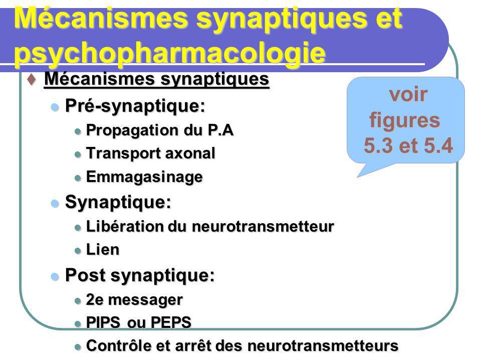 Mécanismes synaptiques et psychopharmacologie