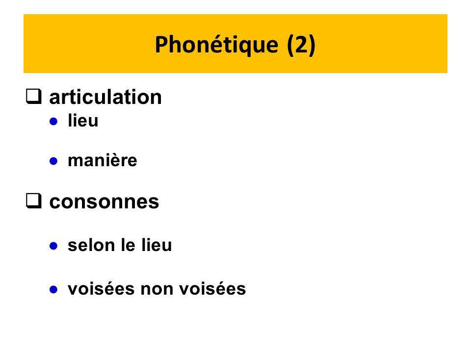 Phonétique (2) articulation consonnes lieu manière selon le lieu