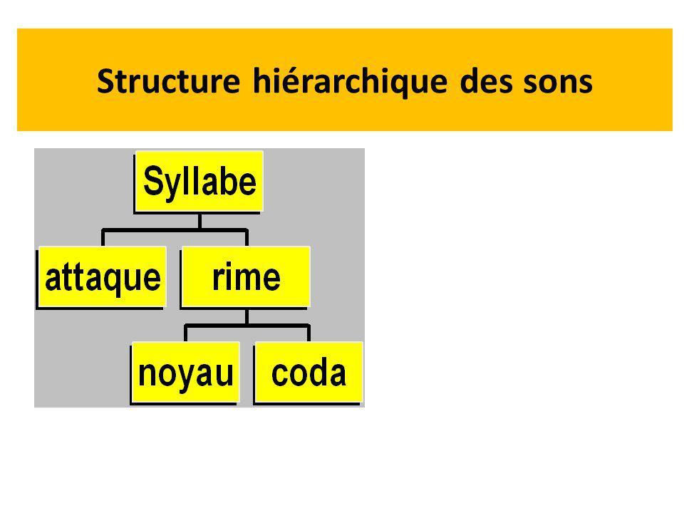 Structure hiérarchique des sons