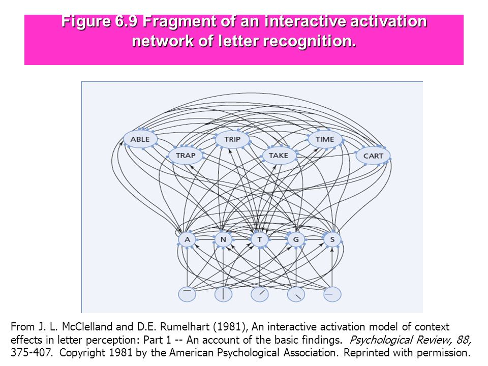 Figure 6.9 Fragment of an interactive activation network of letter recognition.