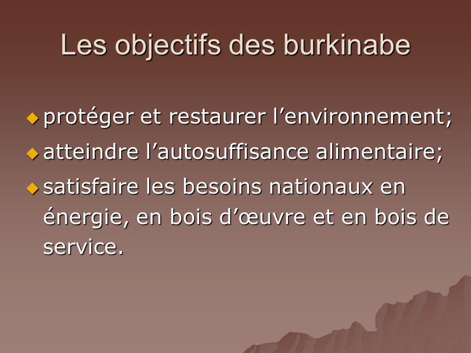 Les objectifs des burkinabe