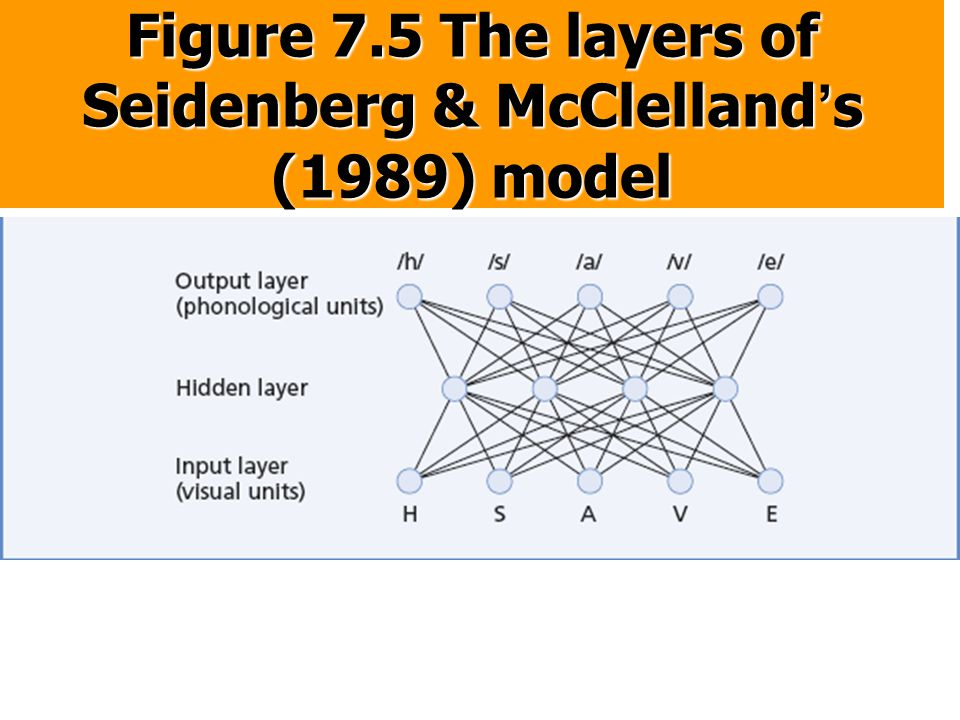 Figure 7.5 The layers of Seidenberg & McClelland's (1989) model