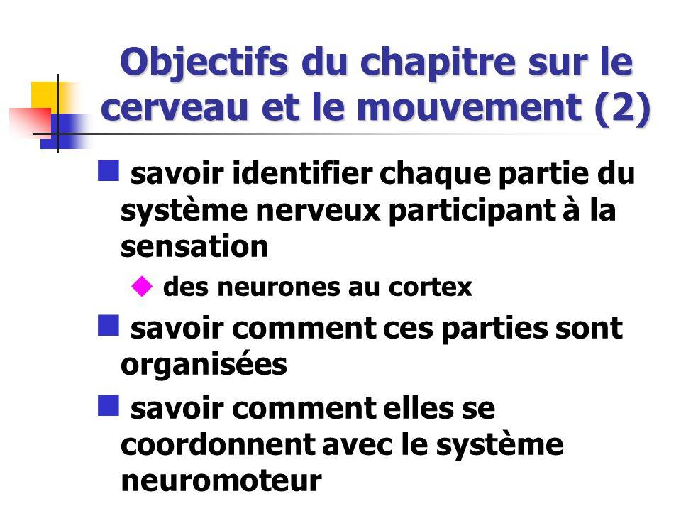 Objectifs du chapitre sur le cerveau et le mouvement (2)
