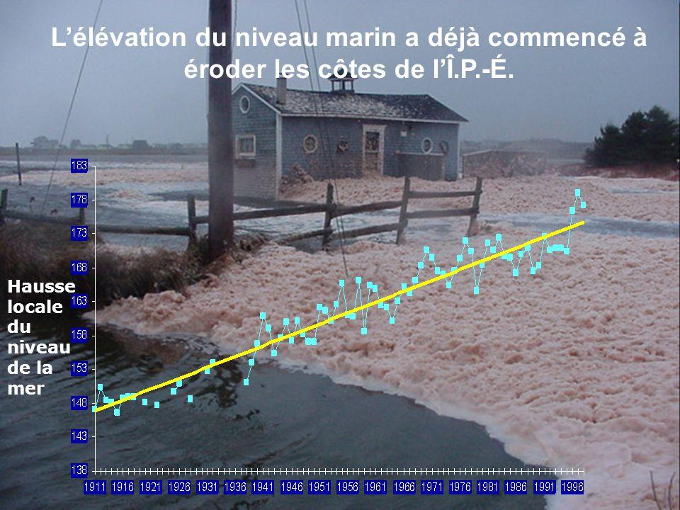 L'élévation du niveau marin a déjà commencé à éroder les côtes de l'Î