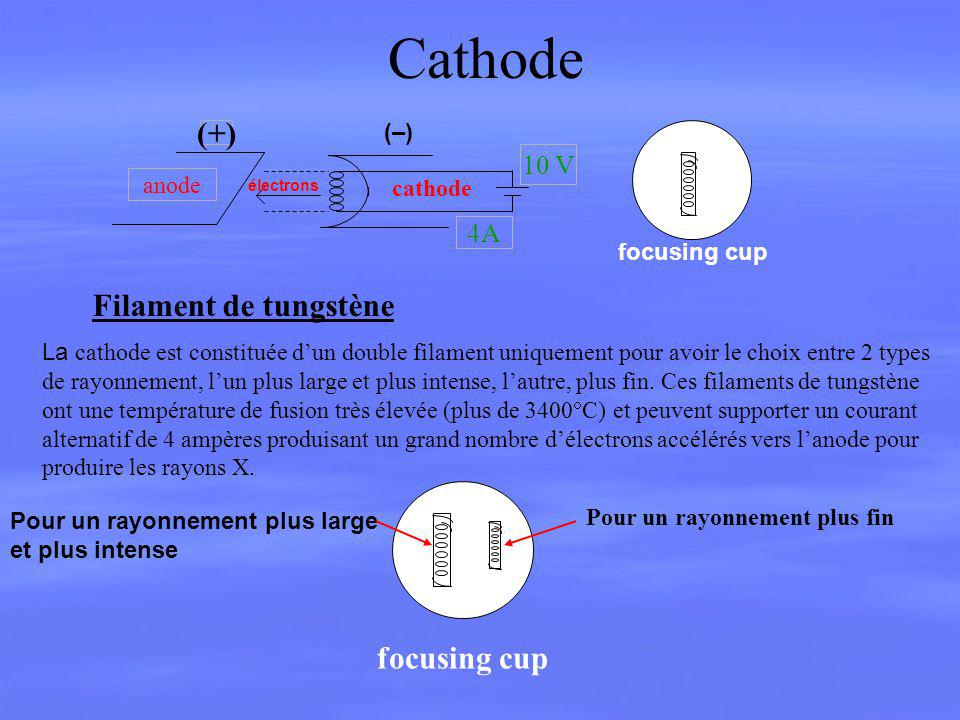Cathode (+) Filament de tungstène focusing cup 10 V 4A (–) anode
