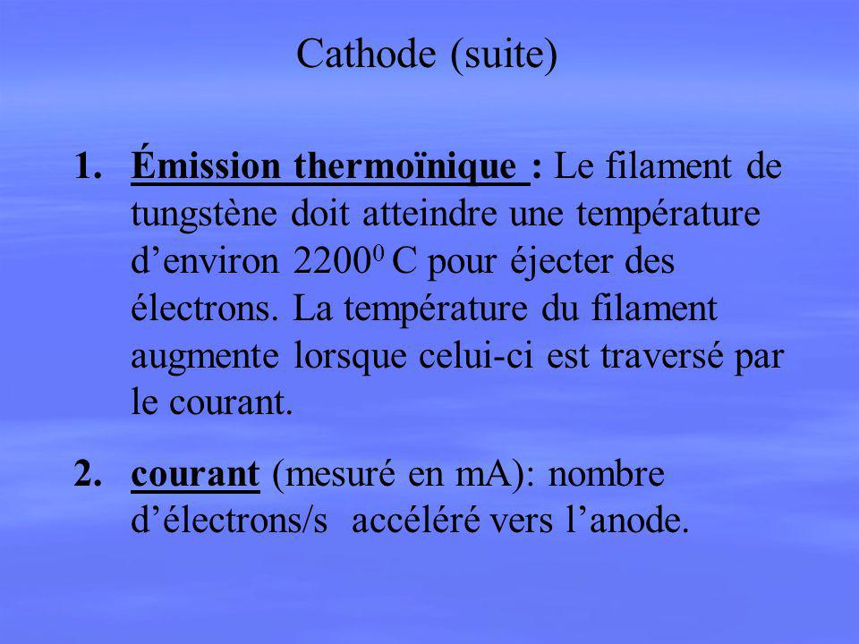 Cathode (suite)