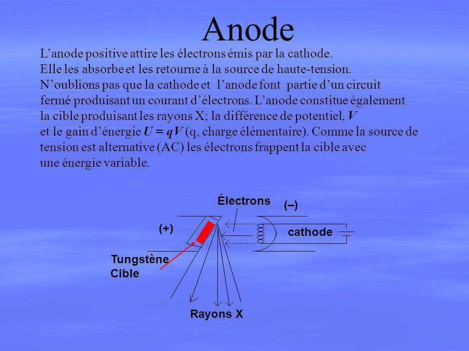 Anode L'anode positive attire les électrons émis par la cathode.