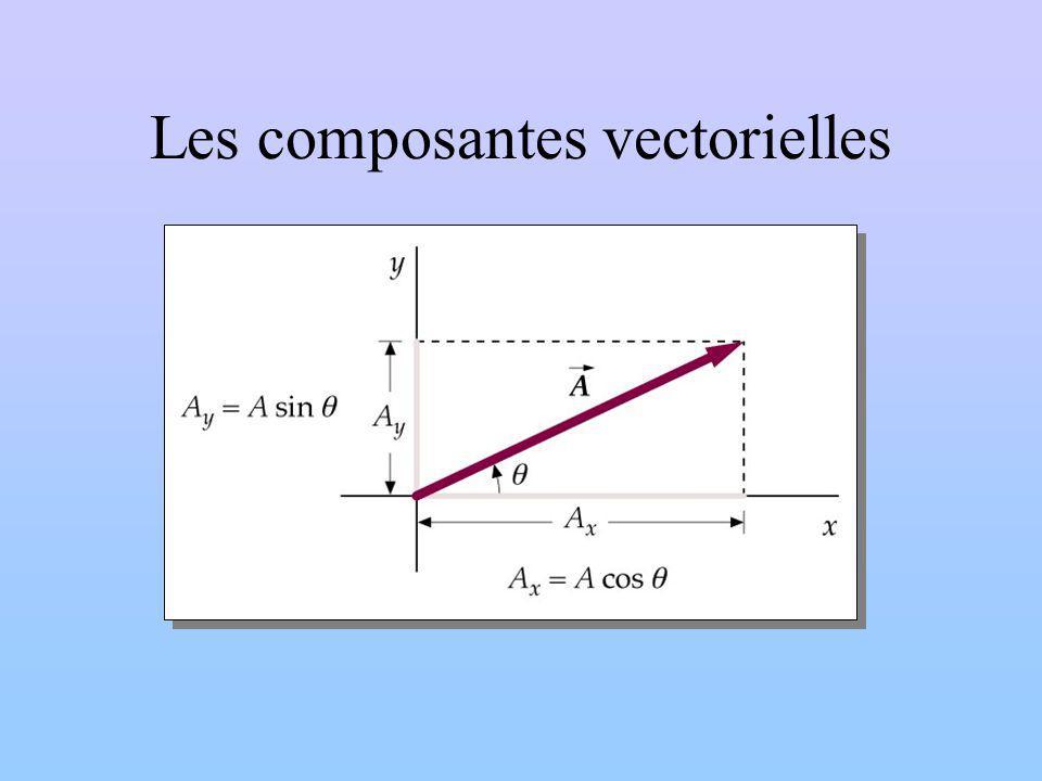 Les composantes vectorielles