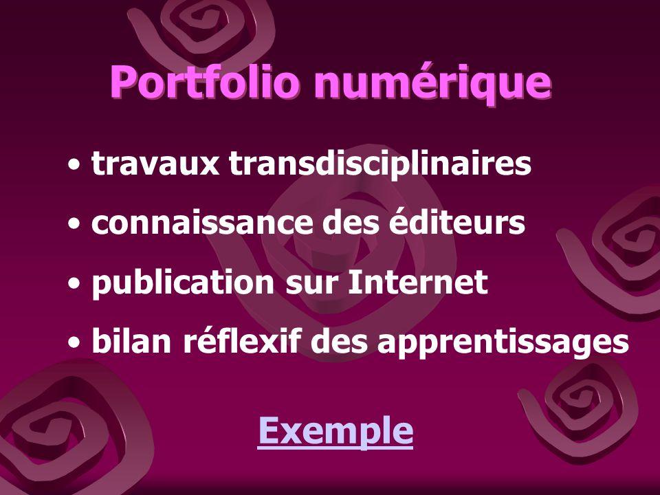 Portfolio numérique Exemple travaux transdisciplinaires
