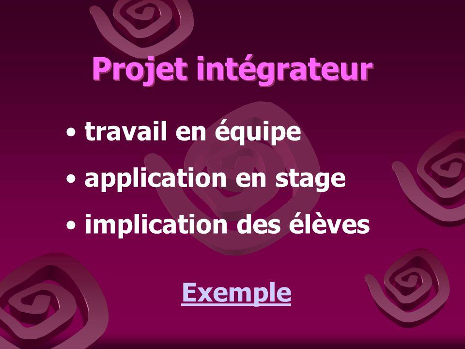 Projet intégrateur travail en équipe application en stage
