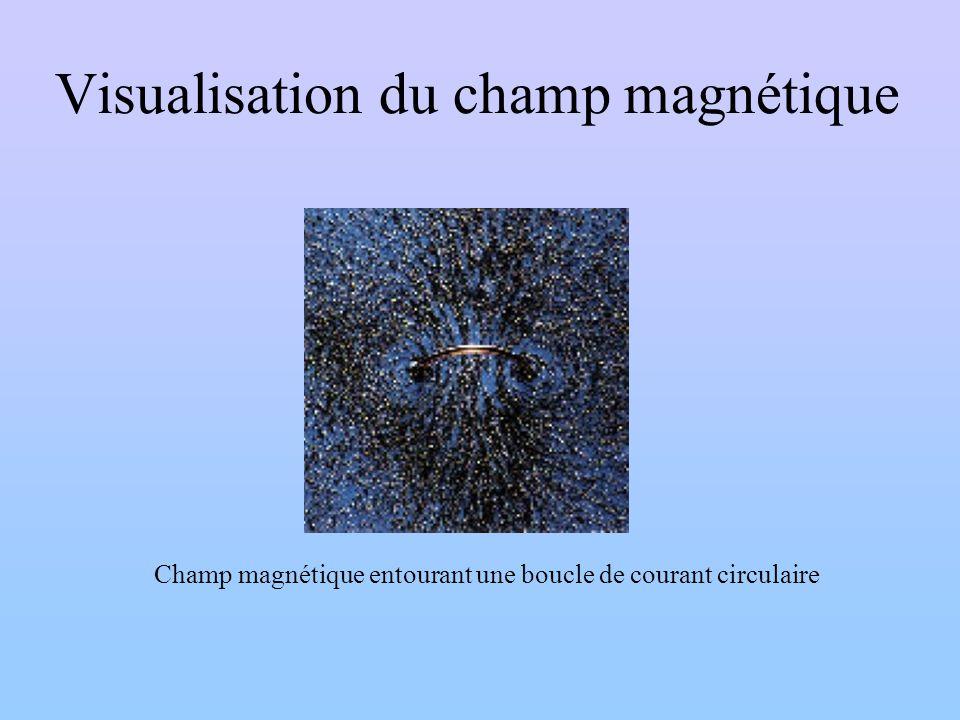 Visualisation du champ magnétique