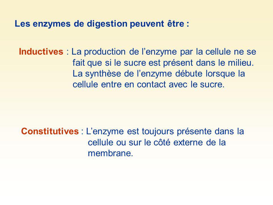Les enzymes de digestion peuvent être :