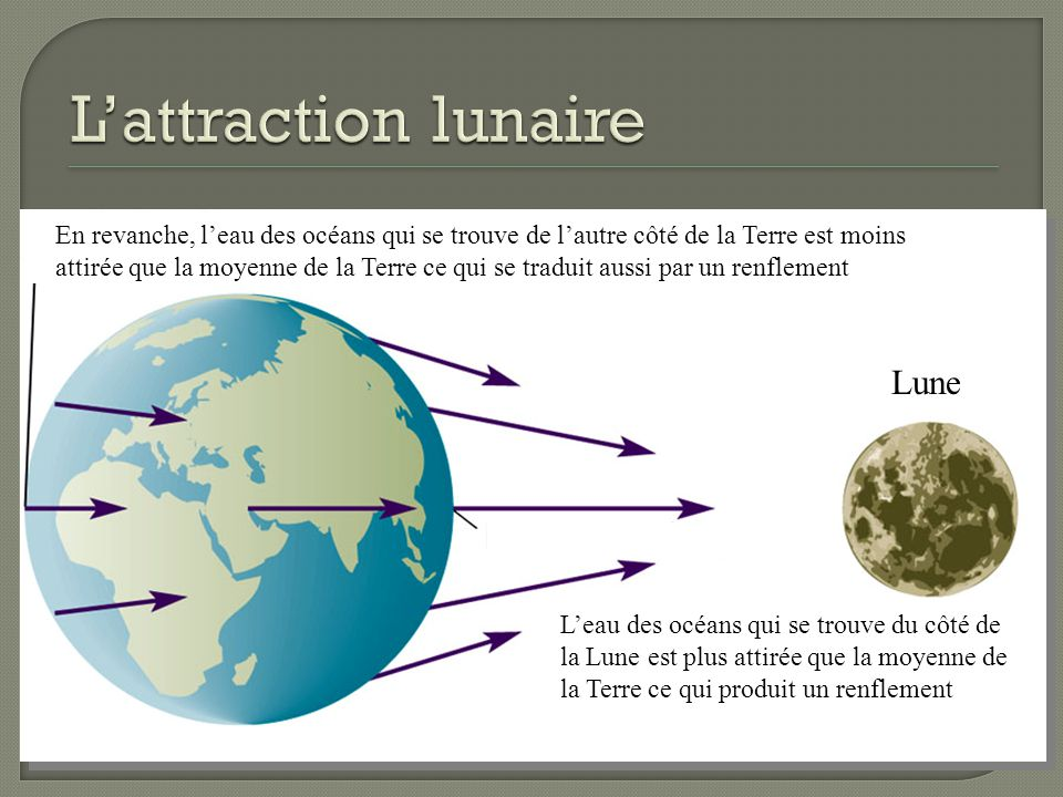 L'attraction lunaire Lune