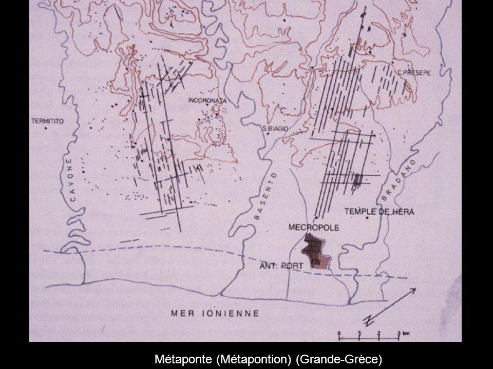 Métaponte (Métapontion) (Grande-Grèce)