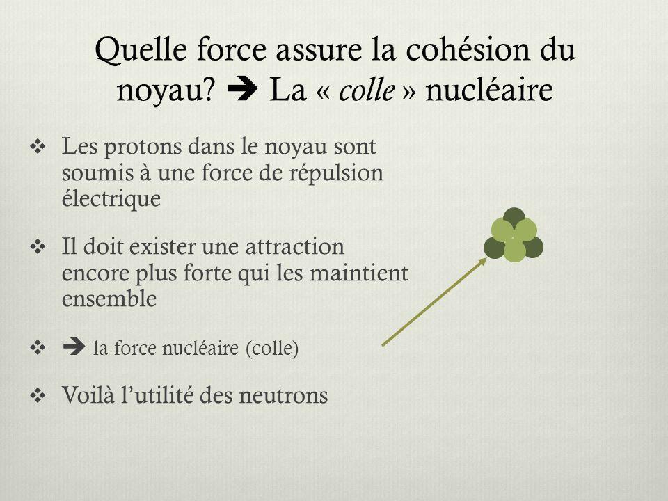 Quelle force assure la cohésion du noyau  La « colle » nucléaire