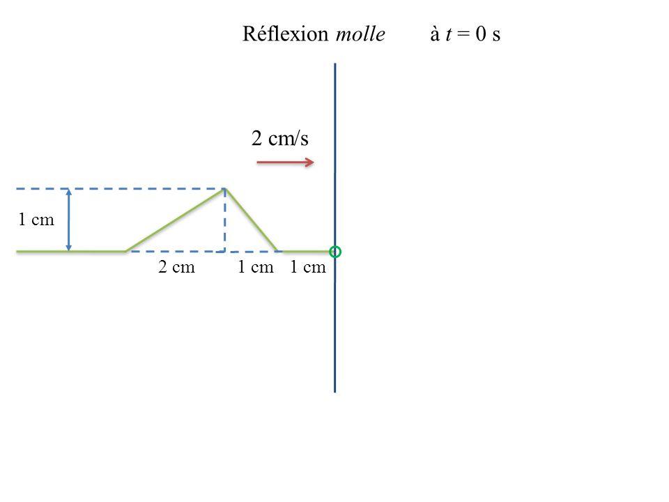 Réflexion molle à t = 0 s 2 cm/s 1 cm 2 cm