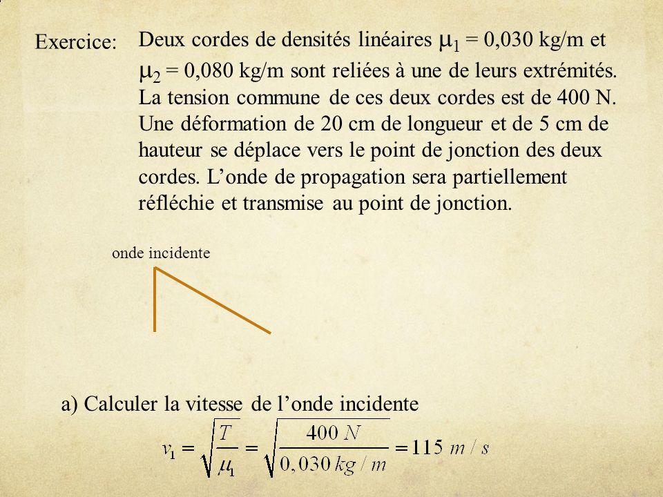 m2 = 0,080 kg/m sont reliées à une de leurs extrémités.