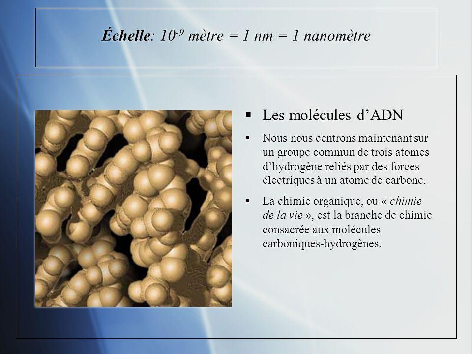 Échelle: 10-9 mètre = 1 nm = 1 nanomètre