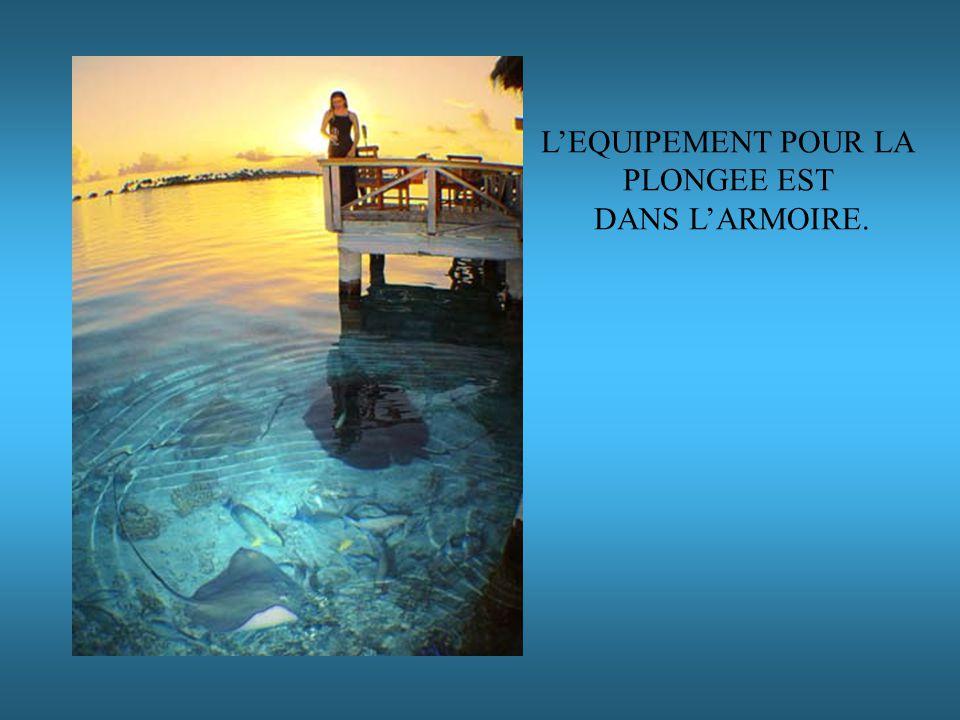L'EQUIPEMENT POUR LA PLONGEE EST DANS L'ARMOIRE.