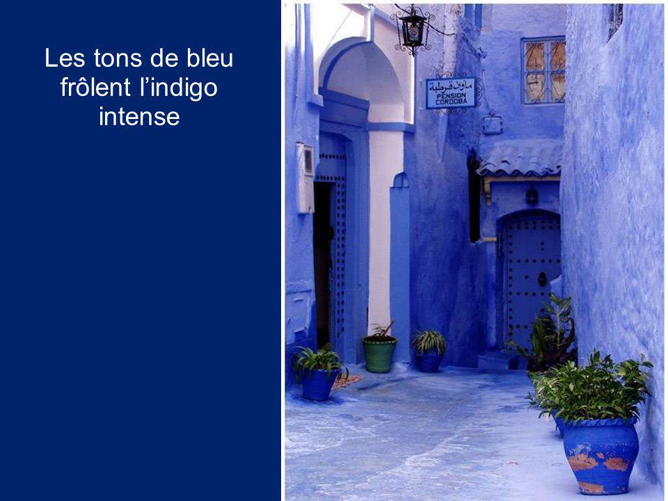 Les tons de bleu frôlent l'indigo intense
