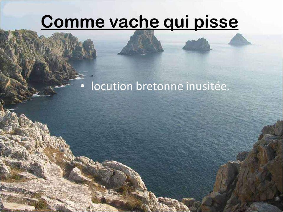 Comme vache qui pisse locution bretonne inusitée.