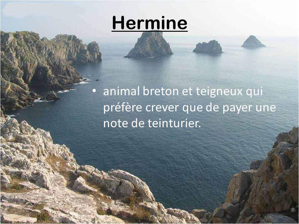 Hermine animal breton et teigneux qui préfère crever que de payer une note de teinturier.
