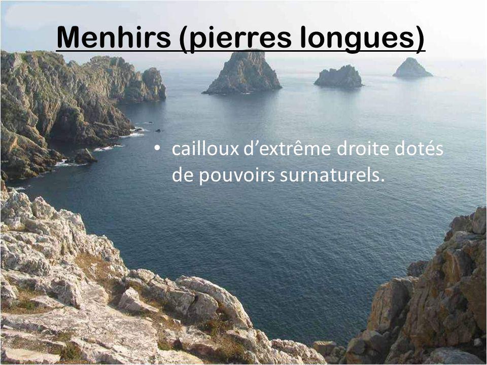 Menhirs (pierres longues)