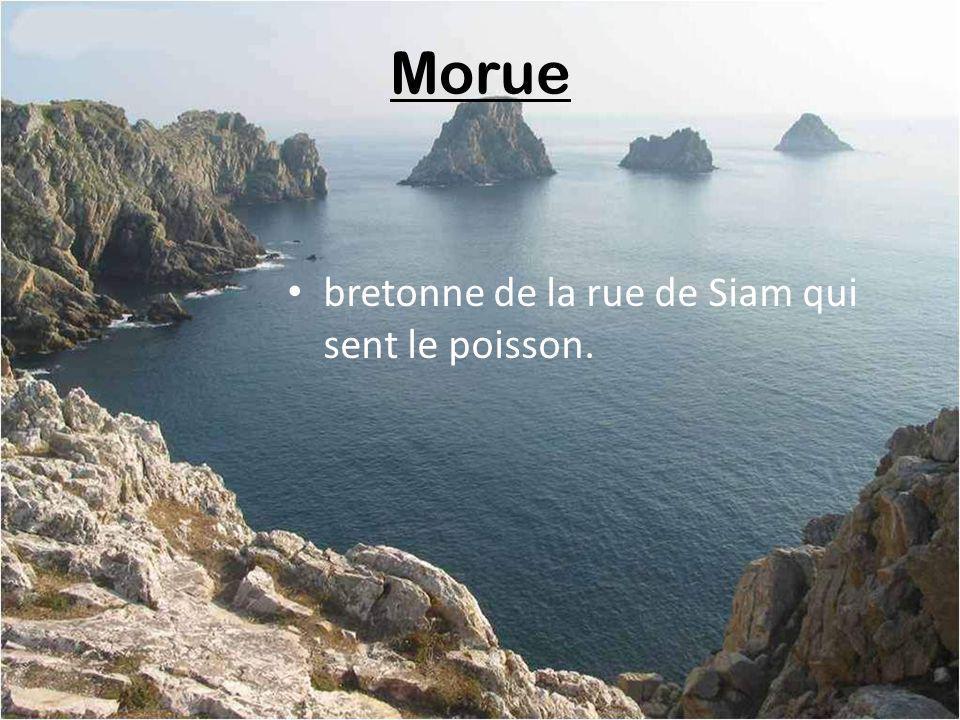 Morue bretonne de la rue de Siam qui sent le poisson.