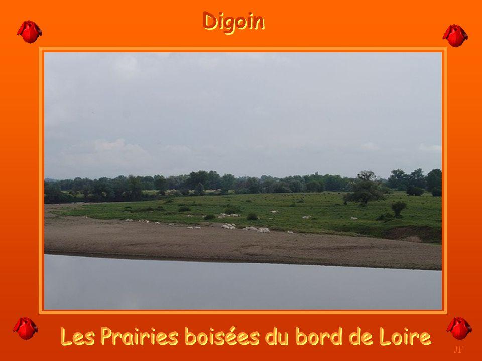 Les Prairies boisées du bord de Loire