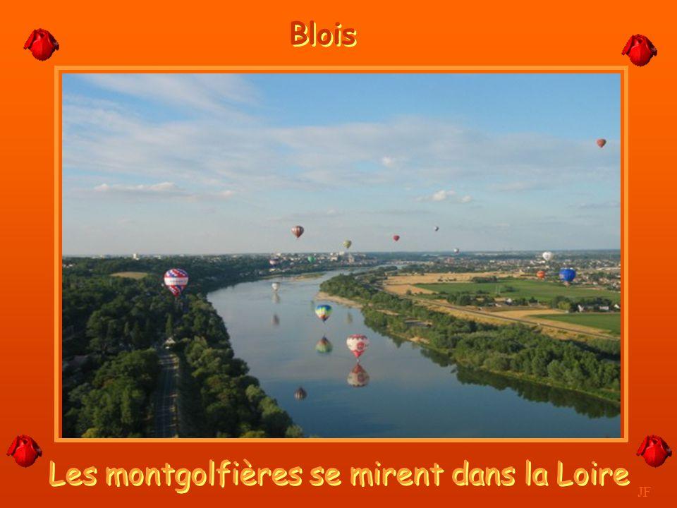 Les montgolfières se mirent dans la Loire