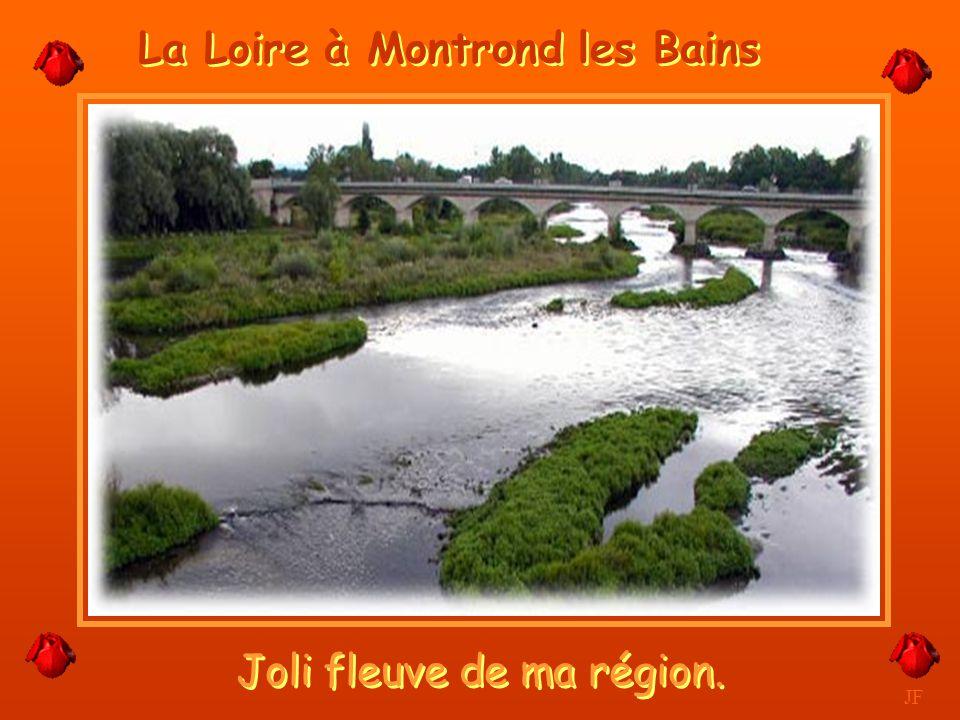 La Loire à Montrond les Bains