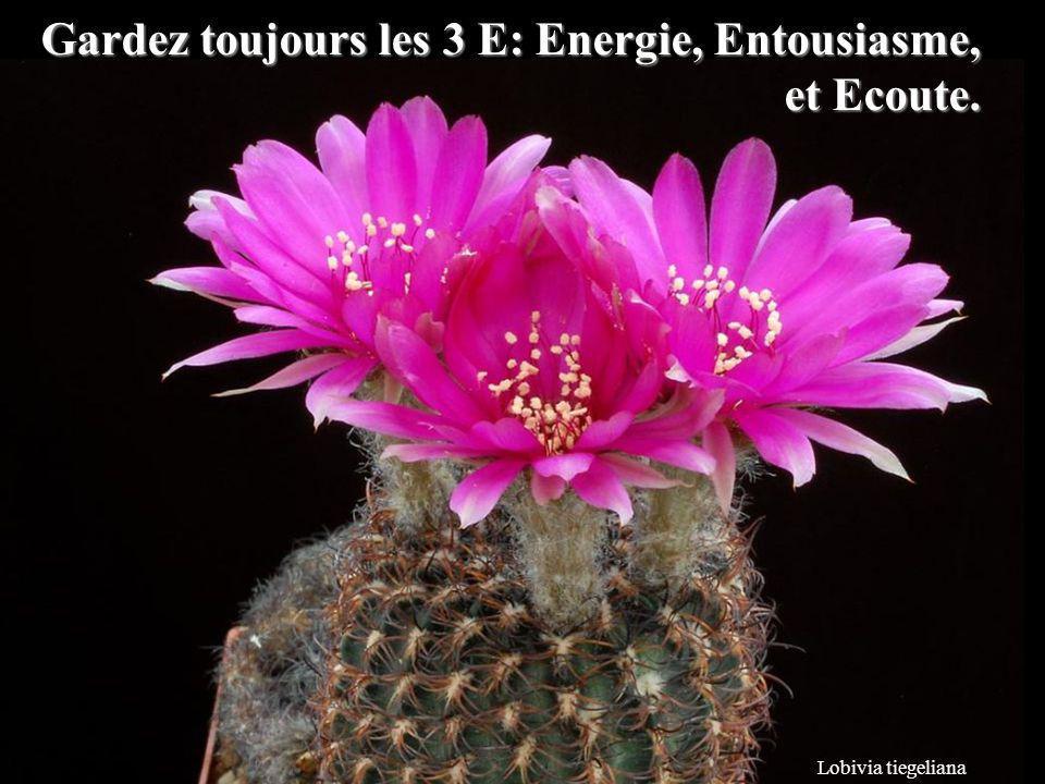 Gardez toujours les 3 E: Energie, Entousiasme, et Ecoute.