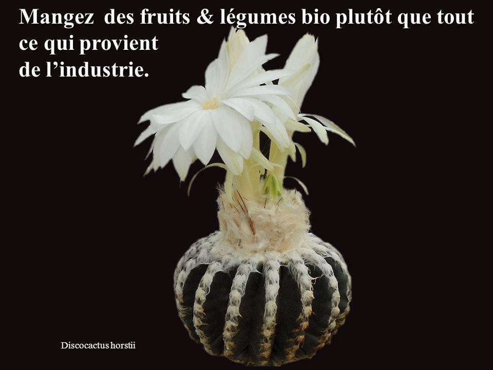 Mangez des fruits & légumes bio plutôt que tout ce qui provient