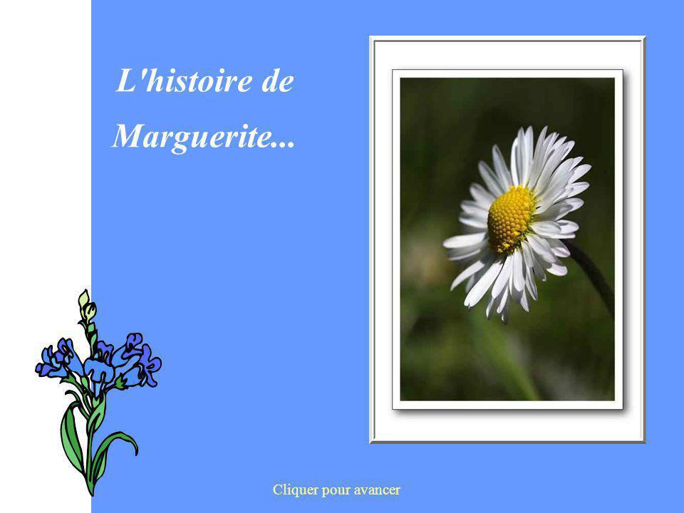 L histoire de Marguerite...