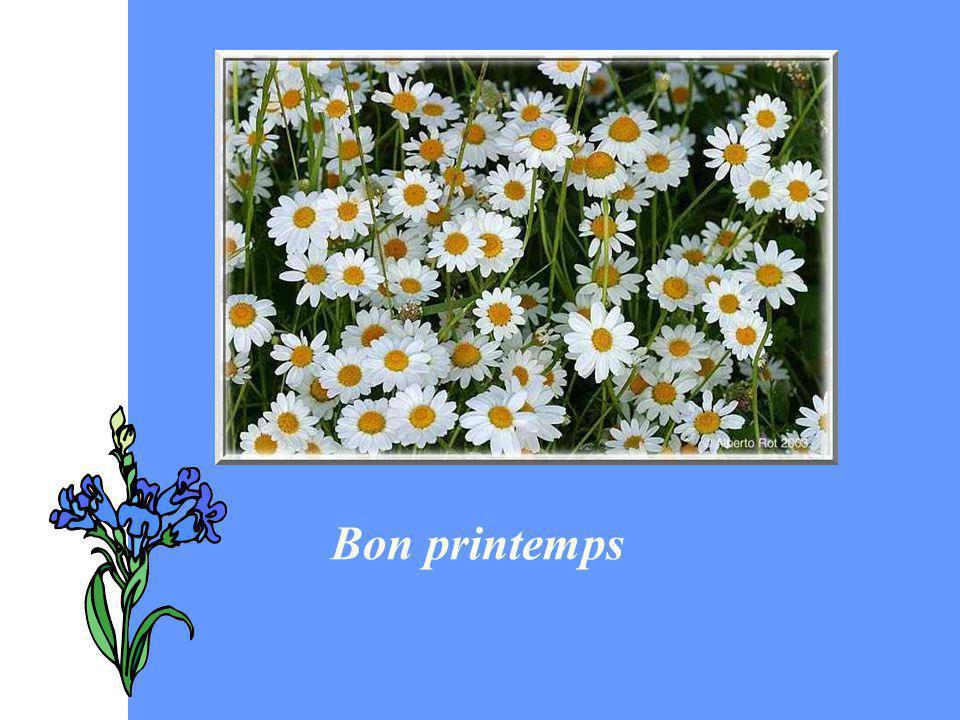 Bon printemps